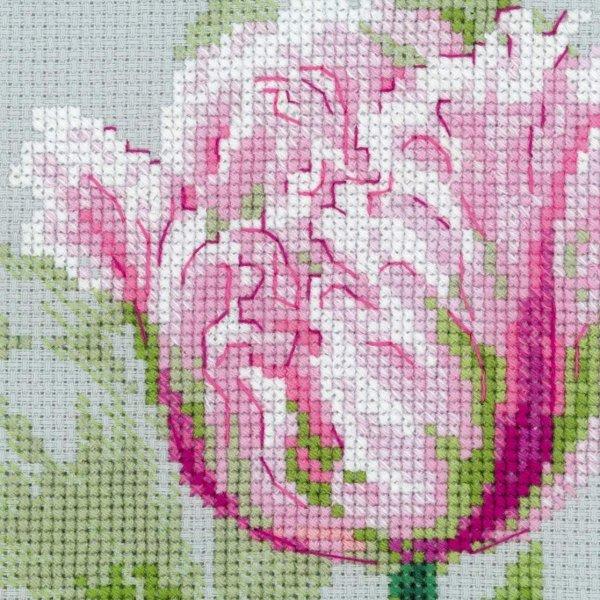 Вышивка тюльпаны риолис схема